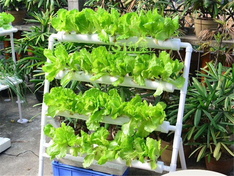 Nutrient Film Technique Hydroponic Systems Near Carlisle